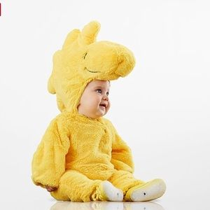 Pottery barn kids Woodstock costume peanuts